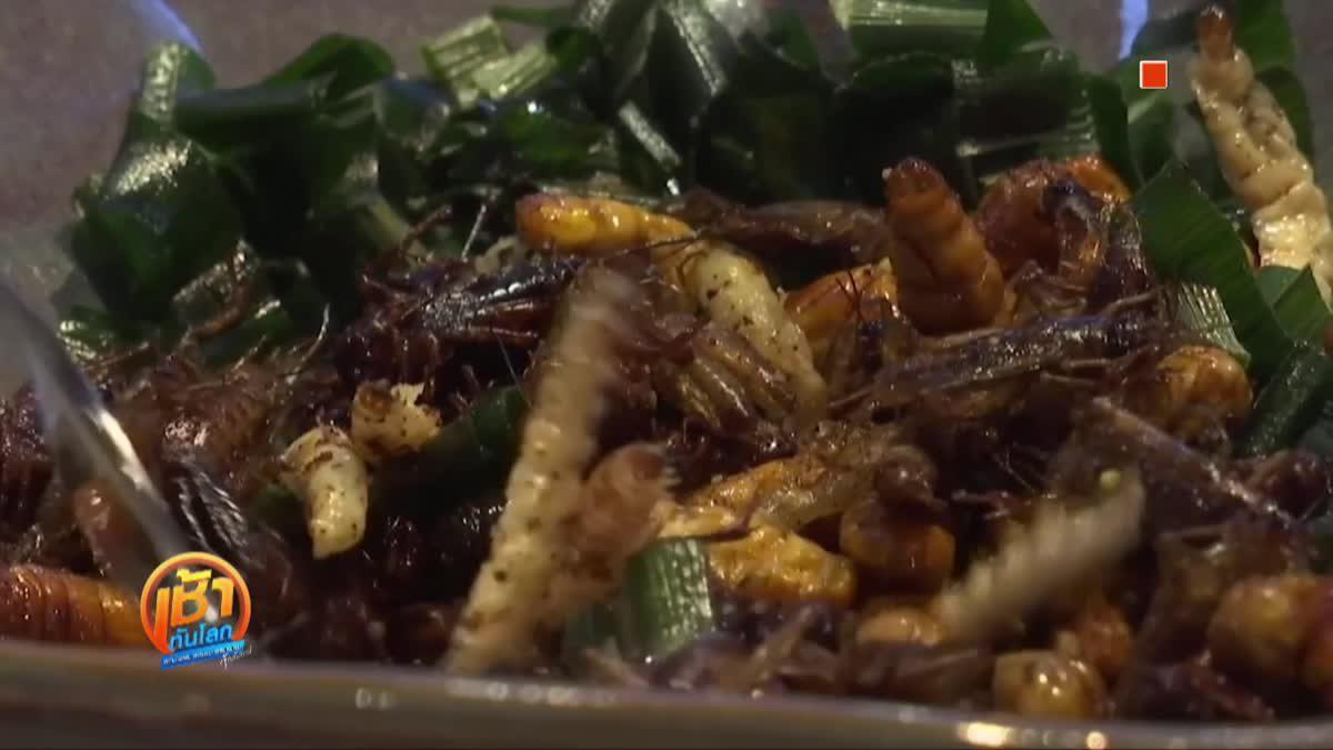 """""""ร้านอาหารเสิร์ฟแมลง"""" เปลี่ยนวิธีคิดการกินแมลง"""