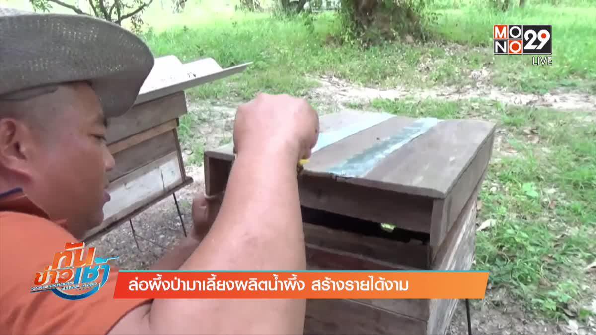 ล่อผึ้งป่ามาเลี้ยงผลิตน้ำผึ้ง สร้างรายได้งาม