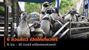 6 สวนสัตว์ เปิดให้เที่ยวฟรี 15 มิ.ย. – 30 มิ.ย. นี้ แต่ต้องจองล่วงหน้า