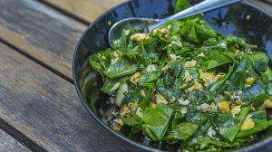 ใบเหลียง ราชินีแห่งผักพื้นบ้าน สรรพคุณดีงาม ช่วยบำรุงสายตา ได้ดีกว่าผักบุ้ง!!