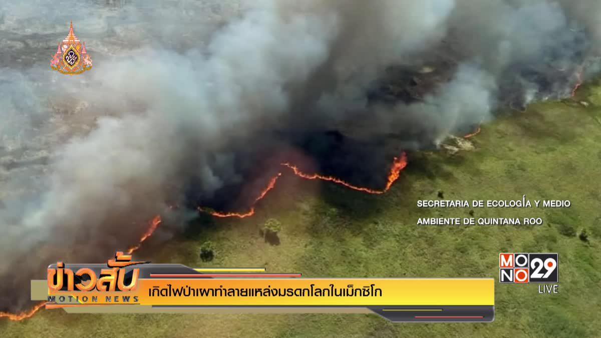 เกิดไฟป่าเผาทำลายแหล่งมรดกโลกในเม็กซิโก