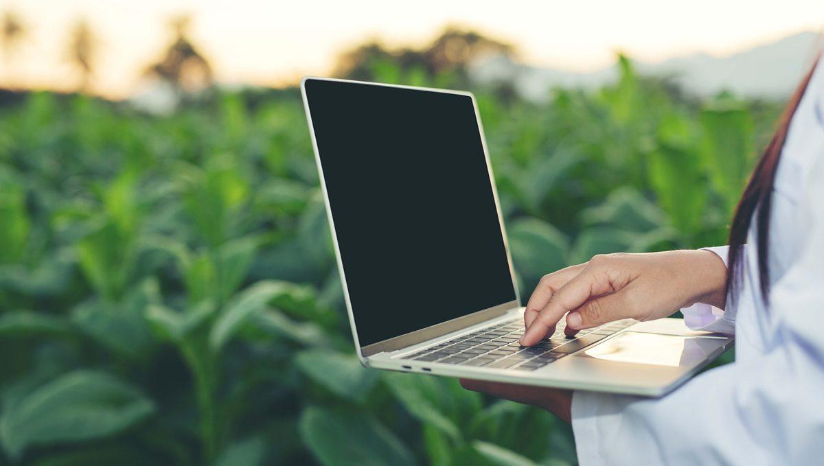 """สจล. เปิดหลักสูตร ป.ตรี """"เกษตรนวัตกร"""" ควบสองปริญญา เกษตรยุคใหม่ที่แรกในไทย"""