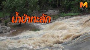 น้ำป่าทะลัก สั่งห้ามนักท่องเที่ยวเล่นน้ำตกแม่สา – จับตา 4 น้ำตกดัง