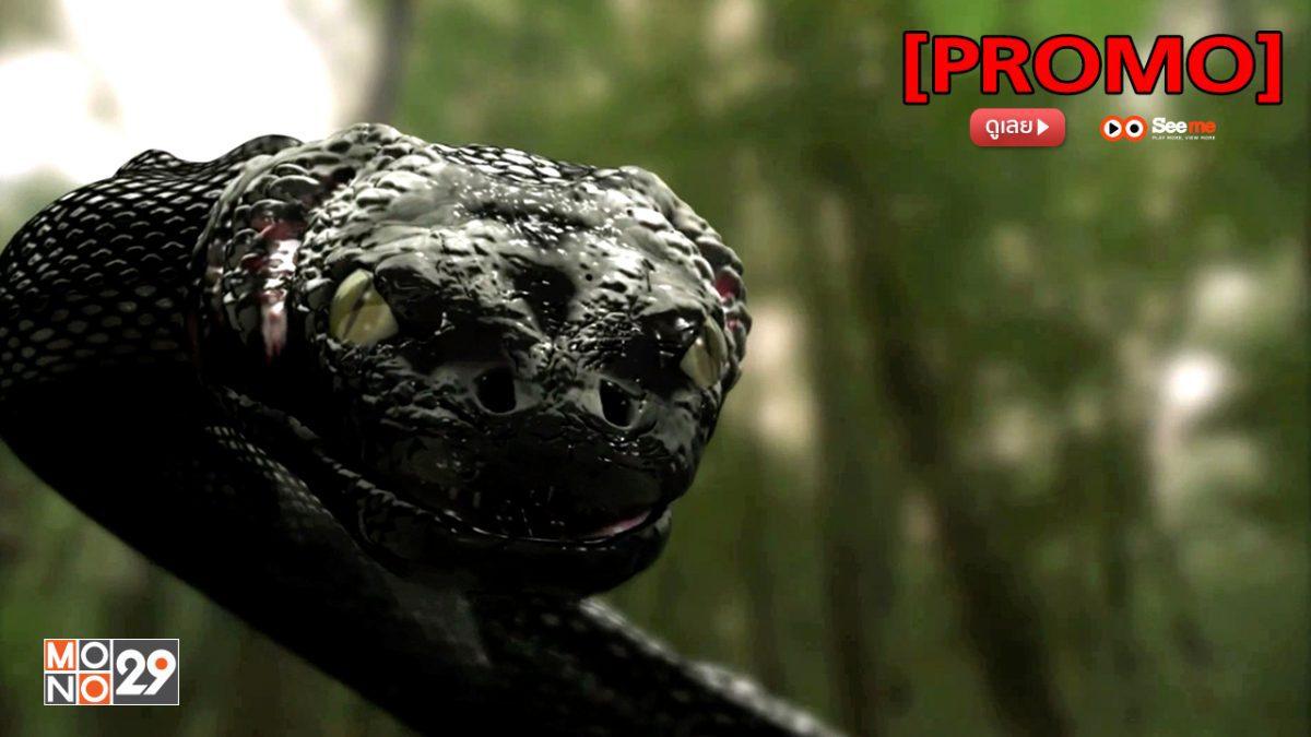 Anaconda: The Offspring อนาคอนดา 3 แพร่พันธุ์เลื้อยสยองโลก [PROMO]