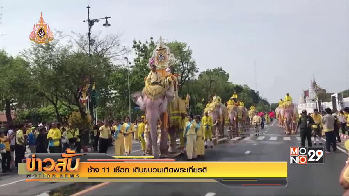 ช้าง 11 เชือก เดินขบวนเทิดพระเกียรติ