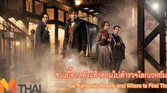 """ชมเบื้องหลังแล้วตามไปสำรวจโลกเวทย์มนต์ใน """"Fantastic Beasts and Where to Find Them"""""""