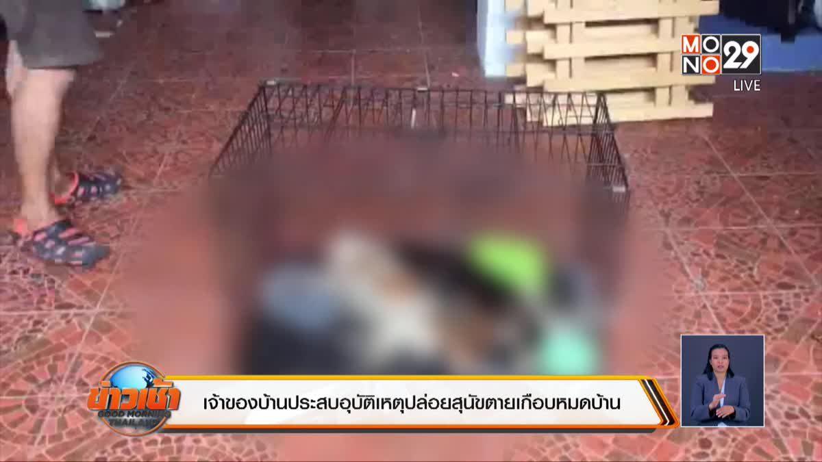 เจ้าของบ้านประสบอุบัติเหตุปล่อยสุนัขตายเกือบหมดบ้าน