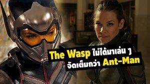 ผู้กำกับ Ant-Man and the Wasp เผยเดอะวอสป์ไม่ได้มาเล่น ๆ จัดเต็มกว่าแอนต์แมนอีก