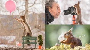 ฉันตามกระรอกทุกวัน ด้วยกล้องของฉันเป็นเวลา 6 ปี และนี่คือ 50 ภาพที่ดีที่สุด