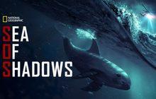 Sea of Shadows ทะเลแห่งเงามืด