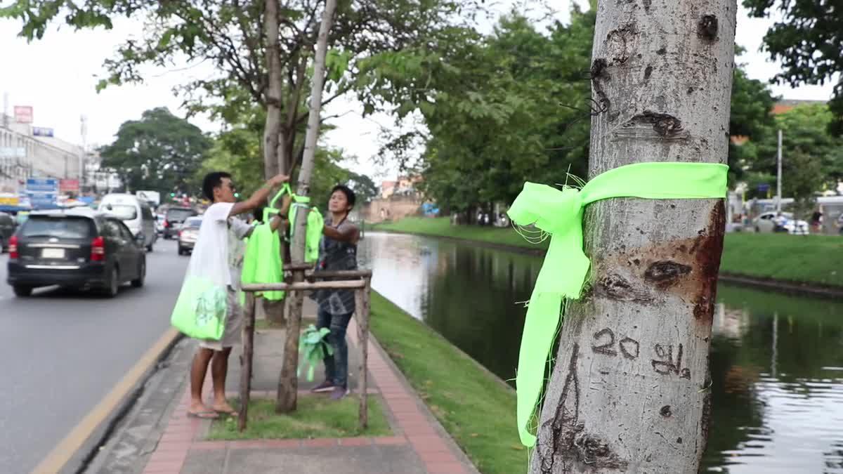 เปลี่ยนริบบิ้นสีเขียวรอบคูเมือง ปลุกกระแสทวงคืนป่าดอยสุเทพ