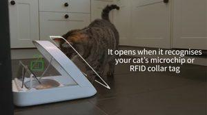 SureFeed Microchip ตัวช่วยหมดปัญหาการให้อาหารสัตว์เลี้ยง
