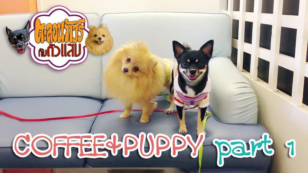 ตะลอนทัวร์กับตัวแสบ - Coffee and Puppy 01