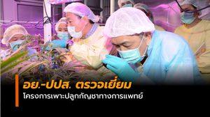 อย.-ปปส. ตรวจเยี่ยมโครงการเพาะปลูกกัญชาทางการแพทย์