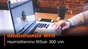กรมการจัดหางาน เปิดรับตำแหน่ง WFH ให้วันละ 300