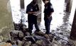 โลมาอิรวดีเกยตื้นตายที่ฝั่งดอนหอยหลอด