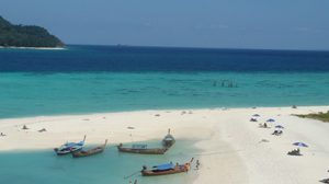 หมู่เกาะ อาดังราวี ดำน้ำชมดอกไม้ทะเล ใกล้ชิดปลาการ์ตูน