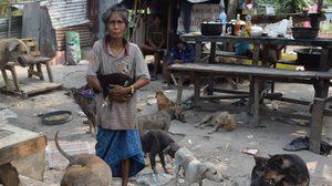 ป้าเล็กคนจนน้ำใจงาม เก็บของเก่าขาย หาเงินเลี้ยงหมากว่า 50 ชีวิต