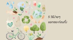 5 วิธีง่ายๆ แยกขยะก่อนทิ้ง สิ่งจำเป็นที่ทุกคนควรสร้างให้เป็นนิสัย