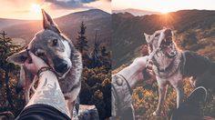 อย่างหล่อ! ช่างภาพหนุ่มพาหมาเพื่อนรักเดินทางไปทุกที่ที่เขาไปกว่า 1,000 แห่ง