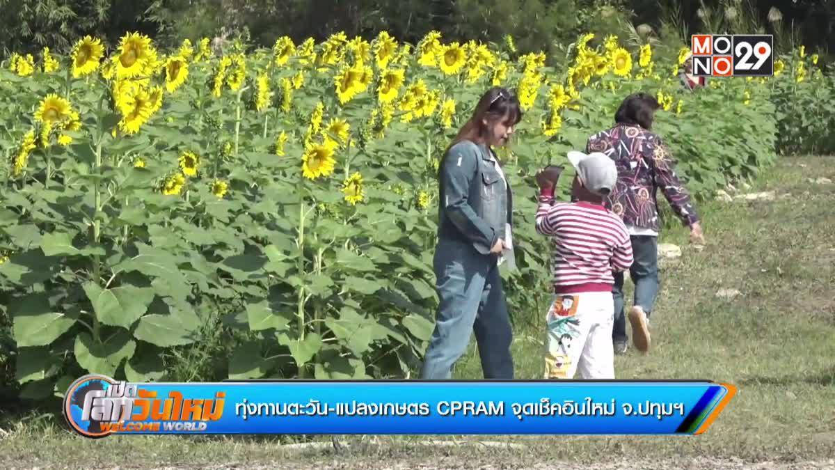 ทุ่งทานตะวัน-แปลงเกษตร CPRAM จุดเช็คอินใหม่ จ.ปทุมฯ