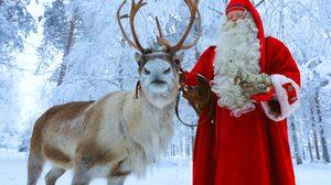 """""""แลปแลนด์ (Lapland)"""" ดินแดนซานตาคลอส สวยดั่งเทพนิยายเมืองหนาว"""
