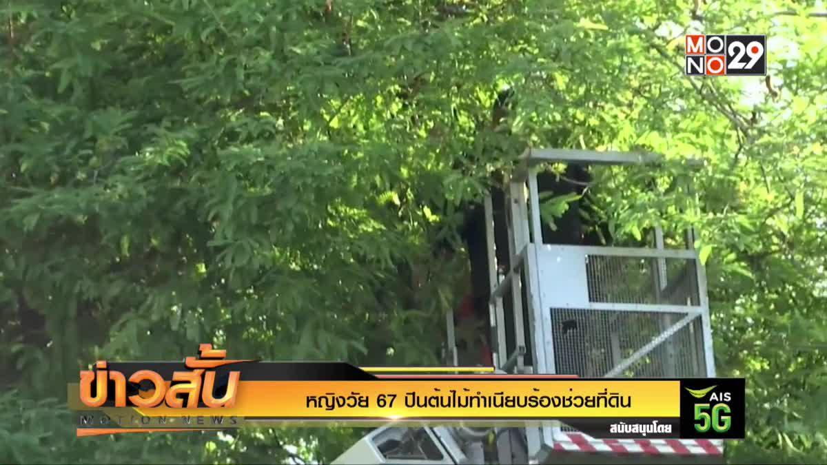 หญิงวัย 67 ปีนต้นไม้ทำเนียบร้องช่วยที่ดิน