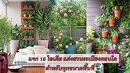 15 ไอเดีย แต่งสวนระเบียงคอนโด ให้สดใสดอกไม้บาน