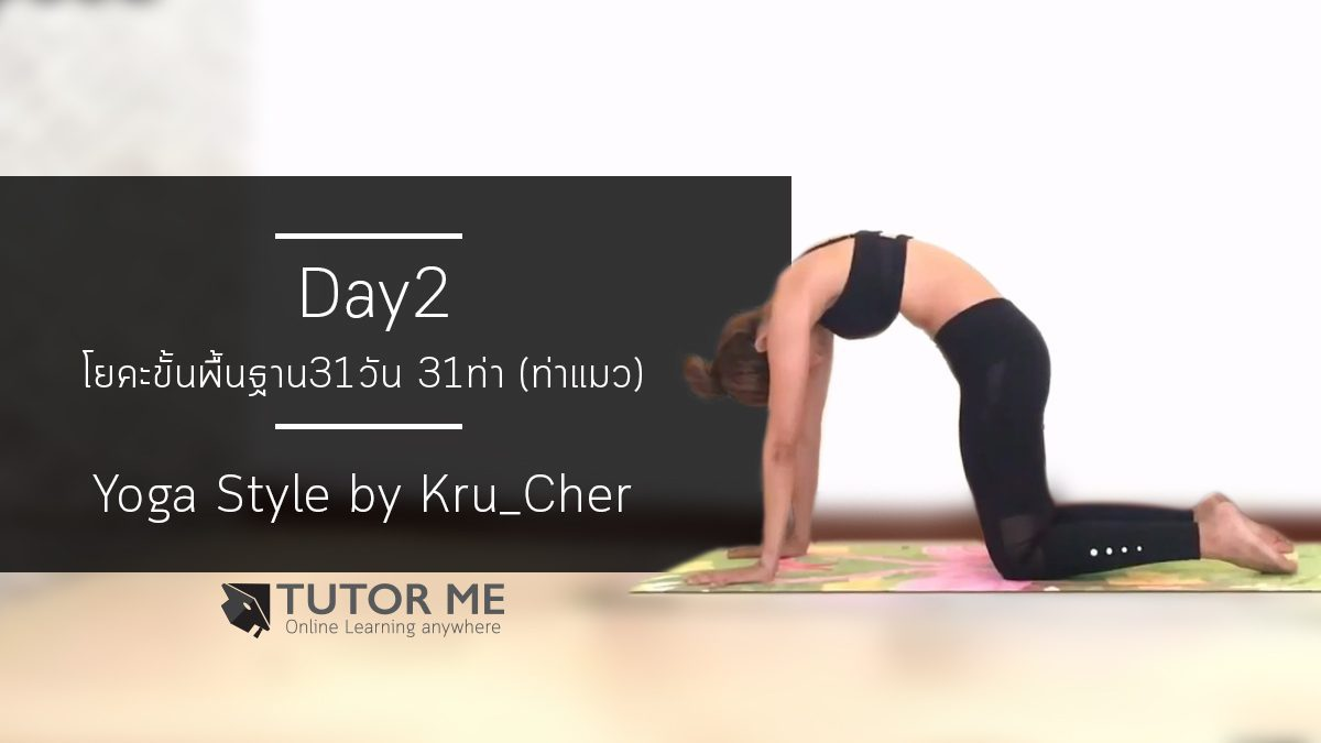 Basic by Kru'Cher - Day2 : Cat pose (ท่าแมว)