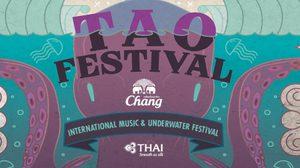 คอดนตรีศิลปะห้ามพลาด! Tao International Music & Underwater Fes.