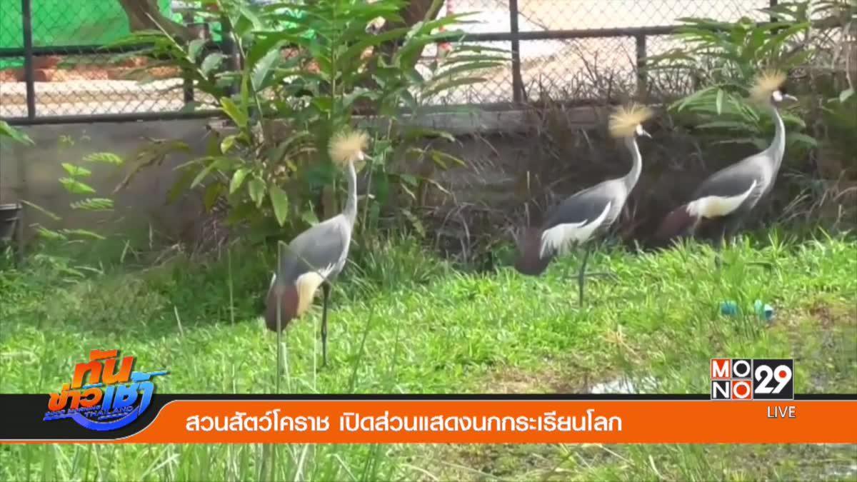 สวนสัตว์โคราช เปิดส่วนแสดงนกกระเรียนโลก