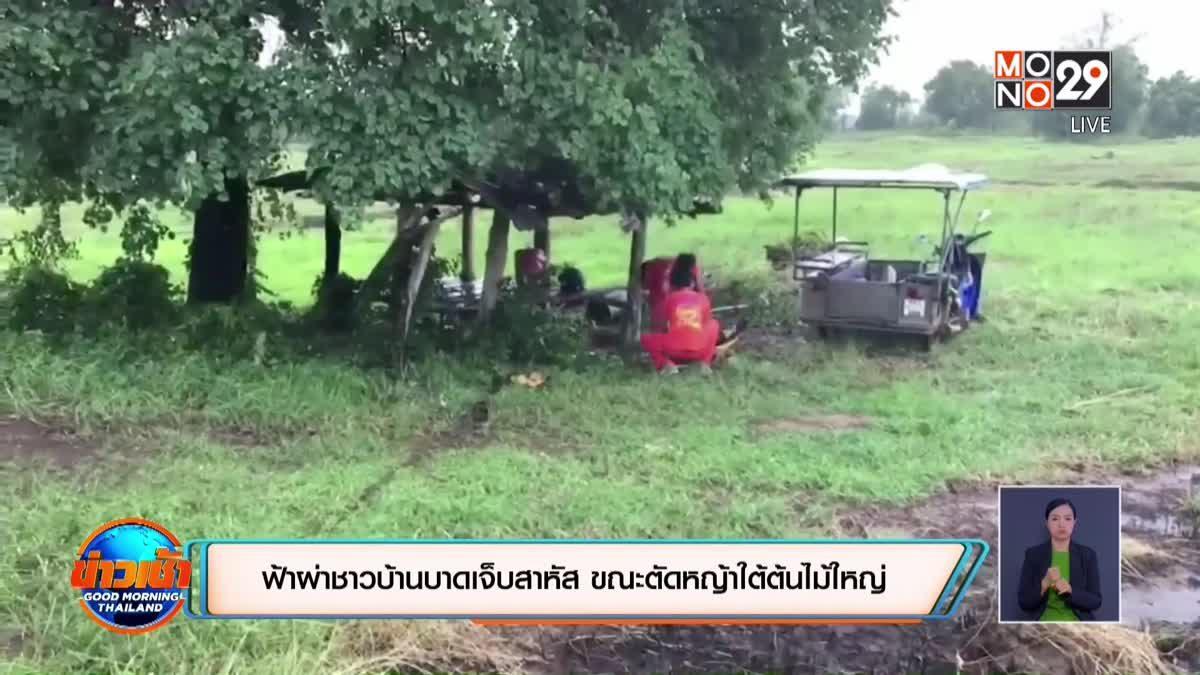 ฟ้าผ่าชาวบ้านบาดเจ็บสาหัส ขณะตัดหญ้าใต้ต้นไม้ใหญ่
