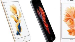 ปลากัดไทย ขึ้นภาพโปรโมท iPhone6s จากงานเปิดตัวที่ผ่านมา