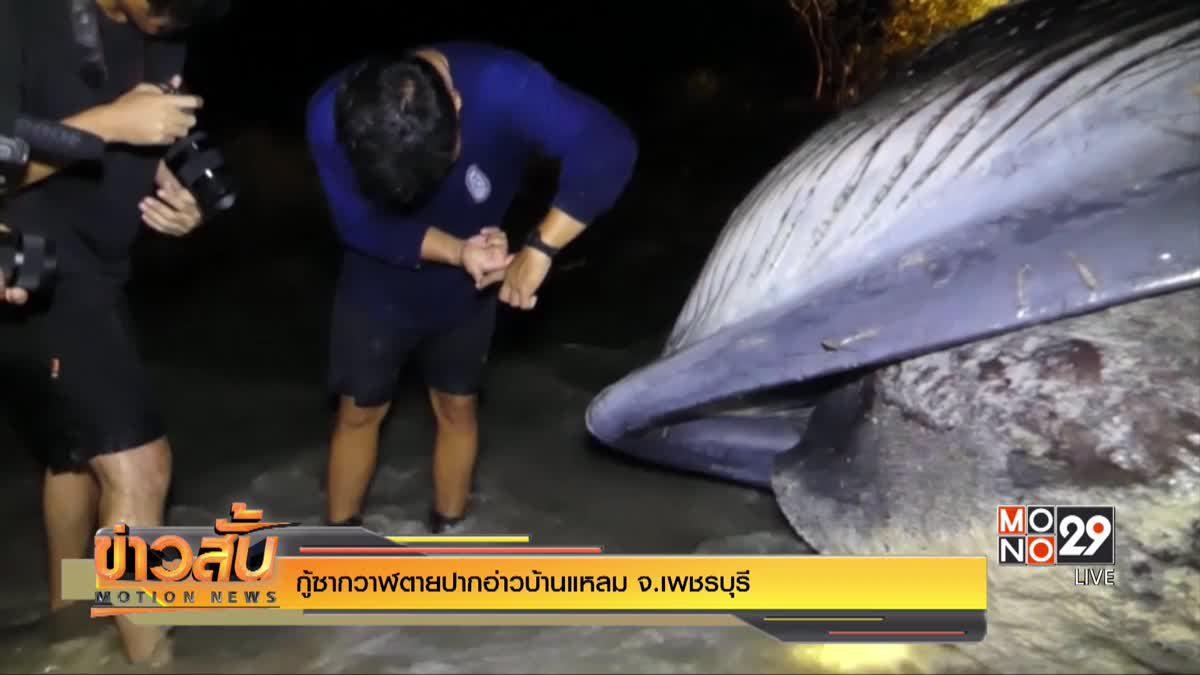 กู้ซากวาฬตายปากอ่าวบ้านแหลม จ.เพชรบุรี
