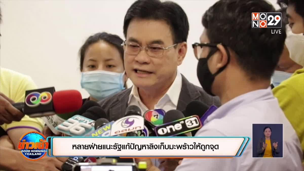 หลายฝ่ายแนะรัฐแก้ปัญหาลิงเก็บมะพร้าวให้ถูกจุด