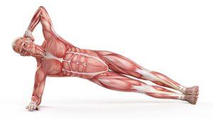 7 ท่าออกกำลังกาย กระชับรูปร่างให้เพรียว ได้ทั้งต้นแขน และ หน้าท้อง!!