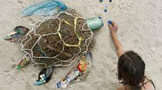 ศิลปะสุดสร้างสรรค์ เอาพลาสติกมาสร้างเป็นสัตว์ เพื่อสะท้อน ปัญหาขยะล้นโลก