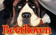 Beethoven บีโธเฟน ชื่อหมาแต่ไม่ใช่หมา ( ภาค 1 )