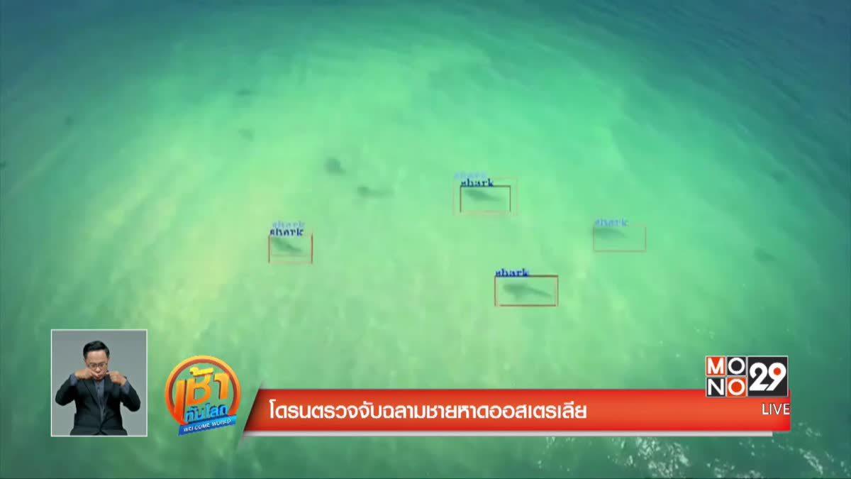 โดรนตรวจจับฉลามชายหาดออสเตรเลีย