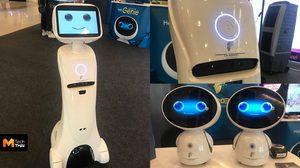 Genie หุ่นยนต์ช่างพูด AI สั่งงานด้วยเสียง ในราคา 29,990 บาท