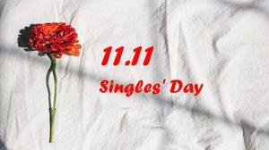 11 เดือน 11 สุขสันต์วันคนโสด (Singles' Day)