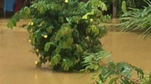 สถานการณ์น้ำ 'เพชรบุรี' ดีขึ้นต่อเนื่อง เหลือพื้นที่การเกษตรยังท่วมอยู่