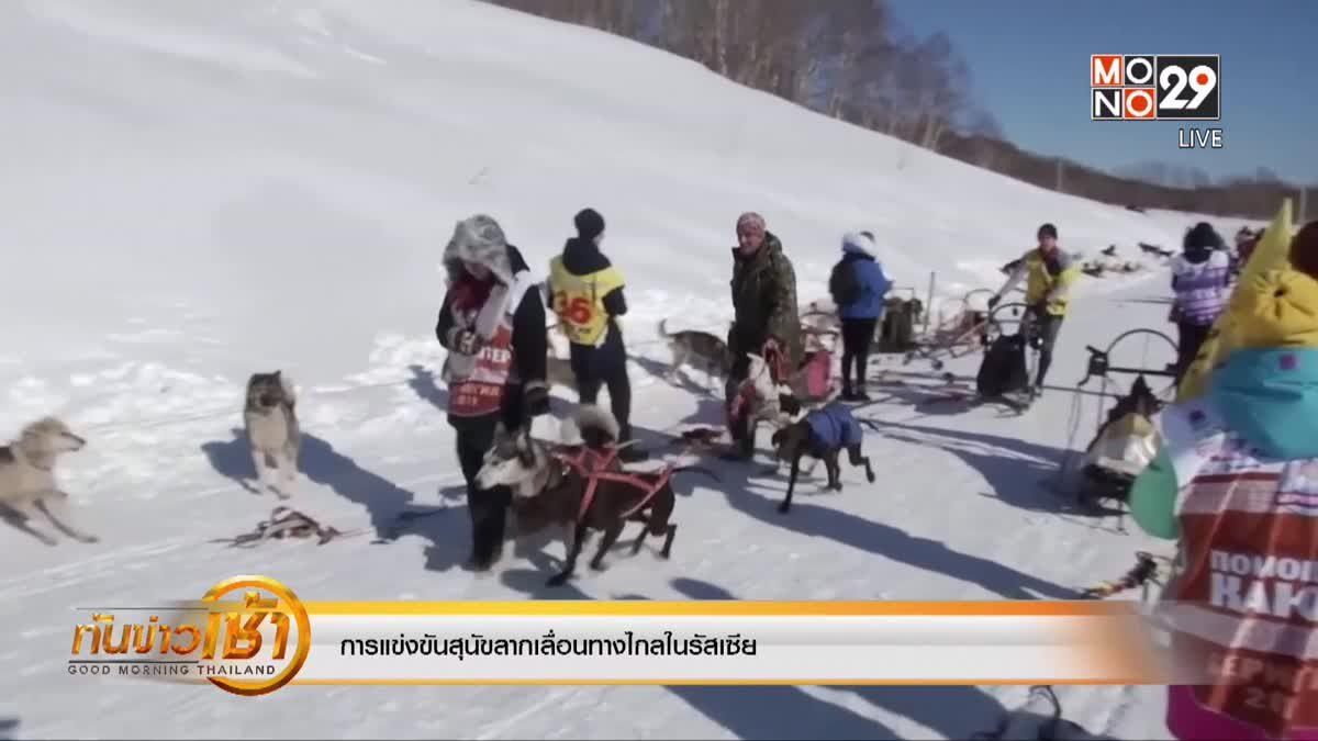 การแข่งขันสุนัขลากเลื่อนทางไกลในรัสเซีย