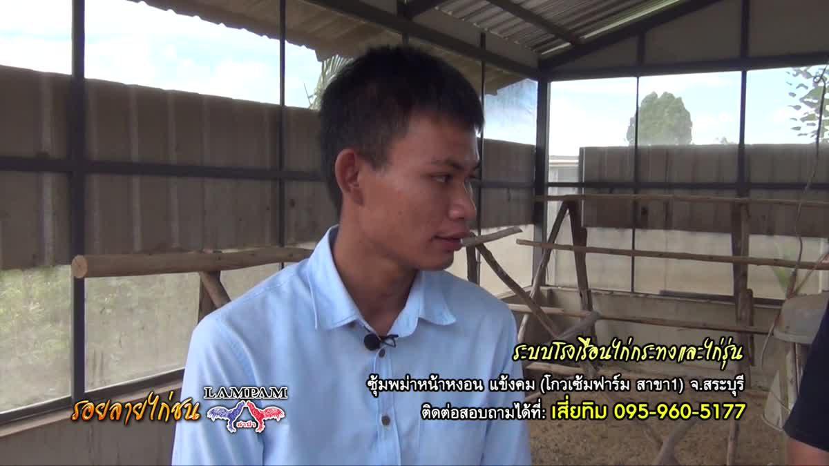 ระบบฟาร์ม พม่าหน้าง่อนแข้งคม สระบุรี