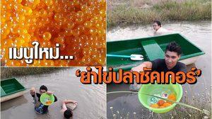เมนูใหม่ 'ยำไข่ปลาซัคเกอร์' เมนูเด็ดแก้ปัญหาระบาดในแหล่งน้ำ