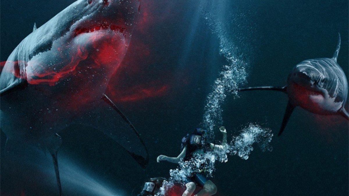 ตัวอย่างภาพยนตร์ 47 Meters Down 47 ดิ่งลึกเฉียดนรก