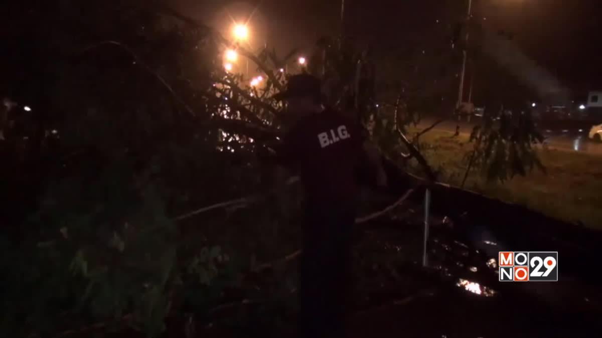 พายุฝนตกหนักต้นไม้ล้มขวางถนน จ.ลำปาง