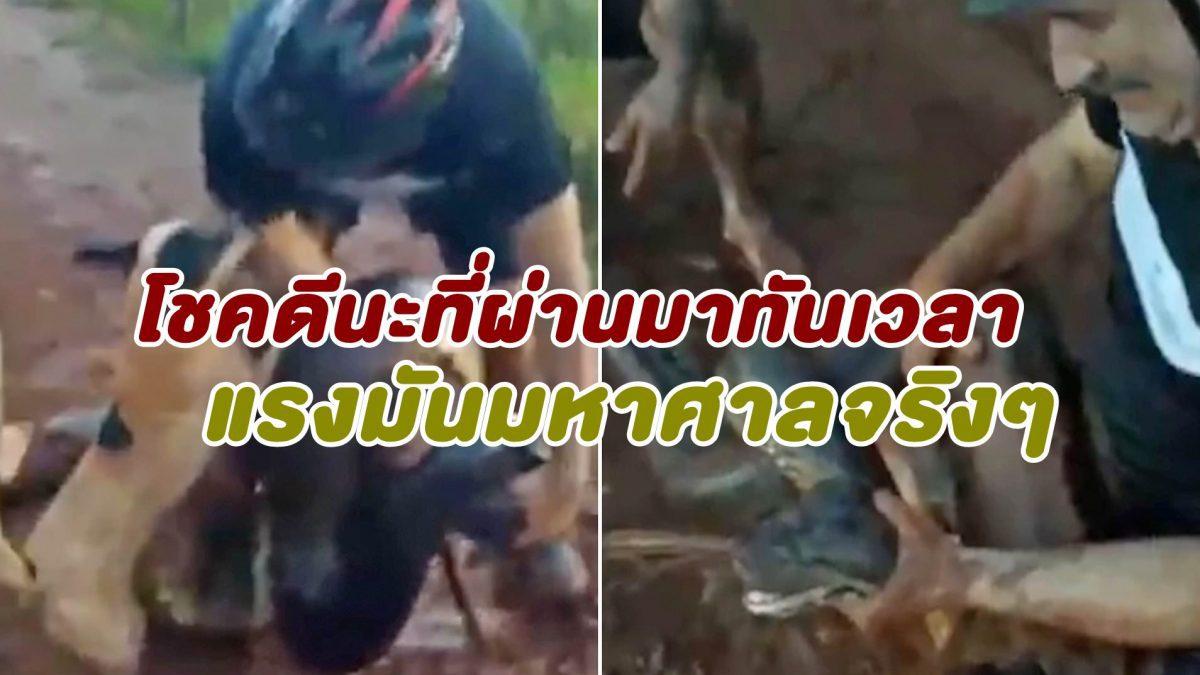 ระทึก นาที งูอนาคอนด้า 4 เมตร  รัดสุนัขหวังเขมือบเป็นอาหาร โชคดี 3 นักปั่นมาช่วยไว้ได้ทัน