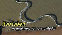 ถึงบางอ้อ! กระดูกงูยักษ์ยาว 130 เมตร มาได้ยังไง?