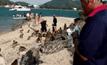 ลิงแสมบนเกาะขาดแคลนน้ำ จ.ชลบุรี